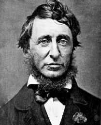 Thoreau-Botanical Weekly